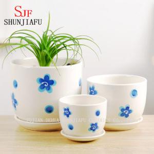 Modern Style Ceramic Succulent Planters, Round Flowerpots, Set of 3 pictures & photos