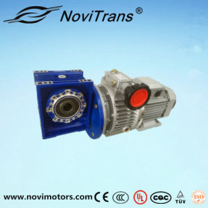 Three Phase Permanent Magnet Synchronous Motor Flexible Motors with Speed Governor (YFM-160/GD) pictures & photos