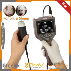 Farmscan M30 Low Price Handheld B Mode Animals Pregnancy Testing Ultrasound pictures & photos