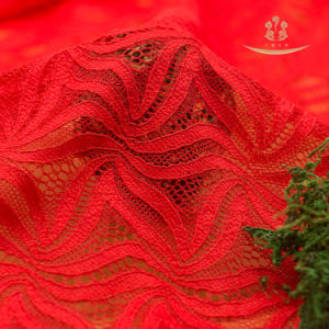 Fashion Nylon Eyelash Lace Fabric pictures & photos
