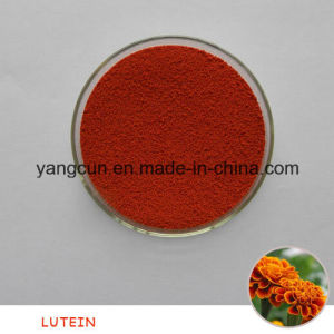 Natural Food Grade 5% Lutein pictures & photos