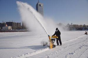 Cheap Gasoline 5.5HP Power Snow Thrower (ZLST551Q) pictures & photos