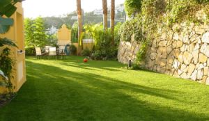 Artificial Grass, Garden Grass, Landscaping Grass (L30B) pictures & photos