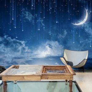 Latest Fashionable Full Color Self Adhesive Wall Murals for Bedroom pictures & photos