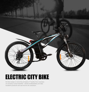 Popular Mountain Electric Bike Tde01 pictures & photos