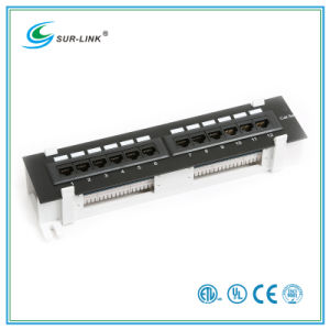 Cat5e 12 Port UTP Wall Mounted Type Patch Panel pictures & photos