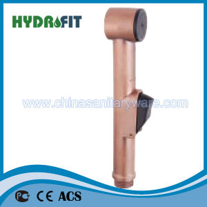 Good Quality Toilet Shattaf (HY203D) pictures & photos