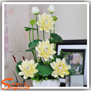2016 Hot Sale Decoration Artificial Lotus Flowers pictures & photos