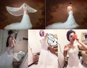 2017 New Fashion Sexy Backless Mermaid Trumpet Wedding Bridal Dress pictures & photos