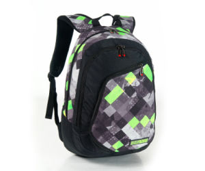 School Backpacks for Men (BF1610285) pictures & photos