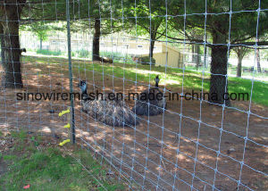 Sailin Woven Wire Mesh Field Fence pictures & photos