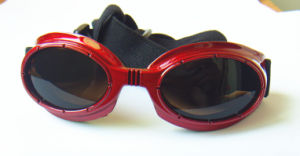 Red Dog Sunglasses, Pet safety Products pictures & photos