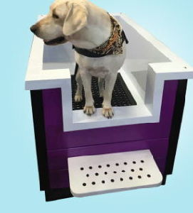 Hot Sale New Design 2017 Animal Veterinary Pet Dog Bathtub Wahsing cleaning Bathtub pictures & photos