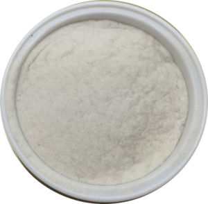Best Quality Natural Hydrolyzed Sponge Extract Powder for Skin Care Use pictures & photos