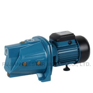 Jsw Series 220V 1HP Low Pressure Water Pump pictures & photos