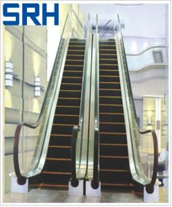 Outdoor Escalator with CE Certificate En115 (GRE20) pictures & photos