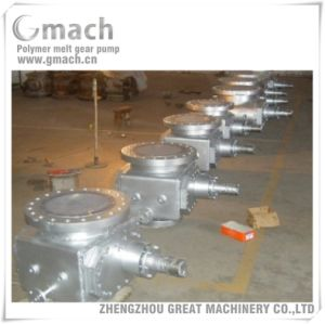 Polymer Melt Gear Pump for Pbs Material Reaction Kettle pictures & photos