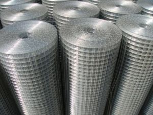 Galvanized Wire Netting with High Quality pictures & photos
