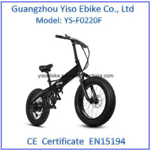 20 Inch Electric off Road Fat Bike pictures & photos