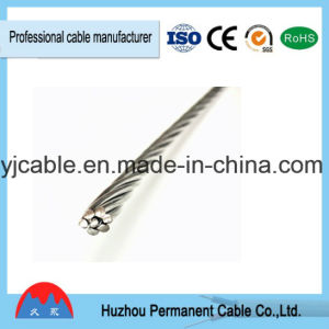 Electrical IEC 61089 Standard AAC 1350 All Aluminum Conductor pictures & photos