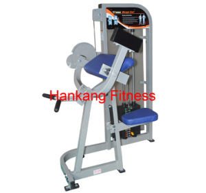 Body Building Eqiupment, Hammer Strength, Biceps Curl (PT-502) pictures & photos