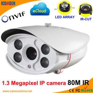 Weatherproof P2p IR 1.3 Megapxiel IP Network Web Camera pictures & photos