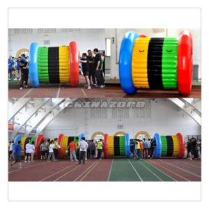 Giant Roller Ball PVC Tarpaulin Grass Ball Inflatable Sport Games