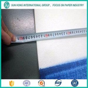 New Design Paper Machine Endless Press Felt pictures & photos