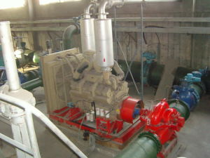 UL List Centrifugal Fire Fighting Water Pump pictures & photos