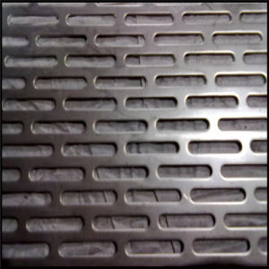 SGS Approved Galvanized Perforated Metal Sheet pictures & photos