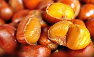 2017 Chinese Organic Chestnut with Good Price pictures & photos