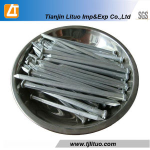 Factory Galvanized/Hot Dipped Galvanized Square Boat Nails pictures & photos