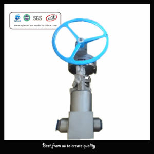 High Pressure Forged Steel Gate Valve (F-05)