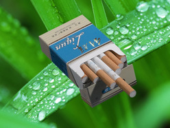 Design Customized 3D Lenticular Cigarette Advertising Poster pictures & photos