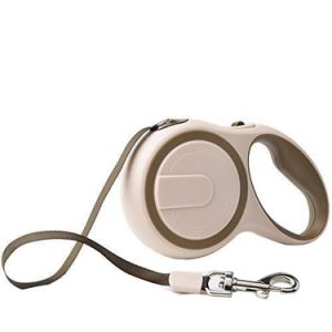 Retractable Dog Leash for Puppy Dog Cat 10 FT Size, No Tangle Training Pet Rope pictures & photos