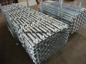 Hot DIP Galvanized Cuplock Scaffold Verticals/Standards pictures & photos