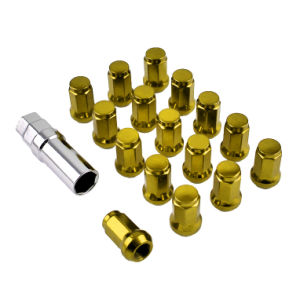 High Quality Alloy Wheels Lug Nut Lock pictures & photos
