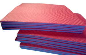 Taekwondo Martial Art Style EVA Foam Interlocking Floor Mat pictures & photos