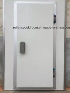 New Hinged Door for Cold Room pictures & photos