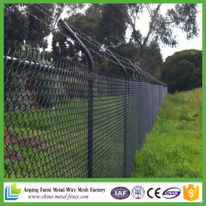 Metal Fencing / Metal Fence Panels / Wire Mesh Fencing pictures & photos