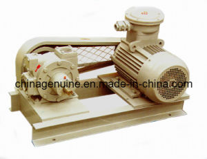Zcheng LPG Vane Truck Pump with Motor pictures & photos
