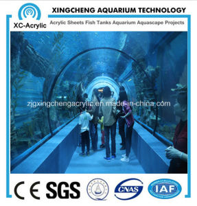 Aquarium Project/ Acrylic Tunnel pictures & photos
