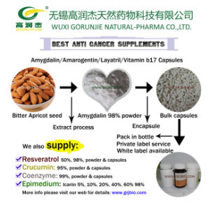 Anti Cancer Natural Apricot Kernel Extract Amygdalin Capsules pictures & photos