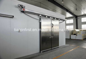 Fish Storage Seafood Meat Refrigeration Unit Cold Storage pictures & photos