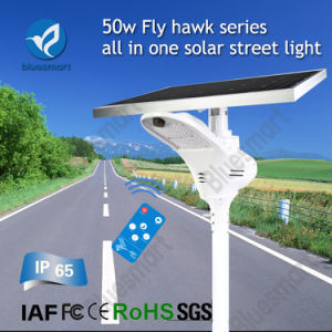 Bluesmart LED Street Lamp 50W Solar Road Light for Africa pictures & photos