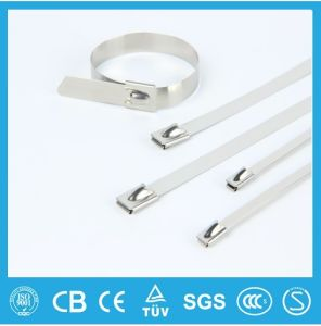 Sale Adjustable Plastic Covered PVC Coated Stainless Steel Cable Ties Free Sample pictures & photos