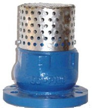 Ss Strainer with Silence Check Foot Valve pictures & photos