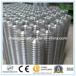 Standard 30m Length Roll Electro Galvanized Welded Wire Mesh pictures & photos