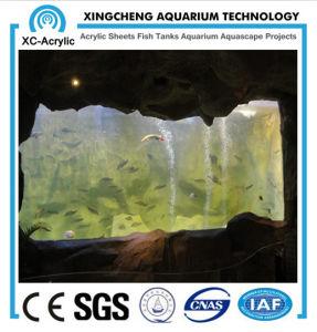 Marine Aquarium pictures & photos