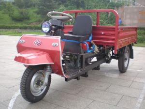 Waw Three Wheel Vehicle pictures & photos